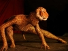 Human Tiger, Fun Events, Family Entertainment, Toronto, Canada